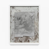 Even in the Case of Lifeless Things, 2O2O, solarized bleached / toned gelatin silver prints mounted on museum board, 14 x 11 inches