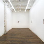 Installation View, The Regard, 2017