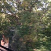 Train-View-Window-1-2014-6-archival-pigment-print-25x19
