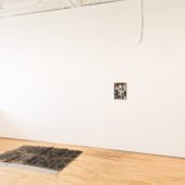 Installation view, Free Range Anxiety