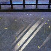 gun-shadows16