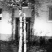 heiner-blumenthal06