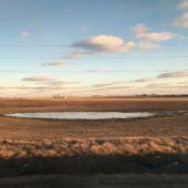 (pond 2)