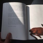 (reading 1)