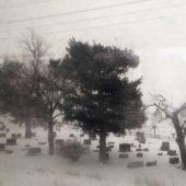 (winter cemetary)